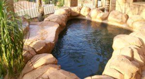Koi ponds and fish ponds